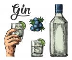 Mastering the basics of the classic G&T