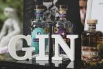 Melodramatic's Bootlegger Prohibition Gin steals the GinFest show